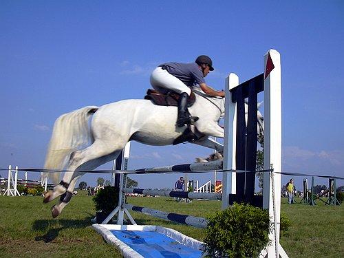 Lovasnap, a ló és lovas átugrat az akadályon