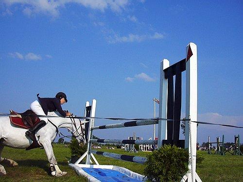A ló megtorpan az akadály előtt