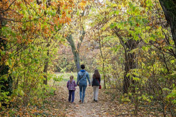 Noémi a gyerekekkel sétál az erdőben